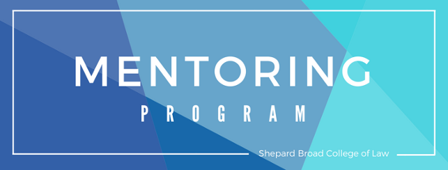 Mentoring Program banner with white lettering on a blue geometric background